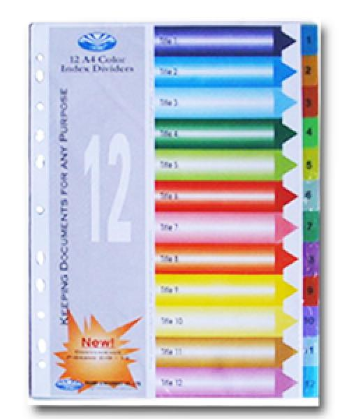 Bìa Phân Trang Nhựa 12 số - Chi Tiết